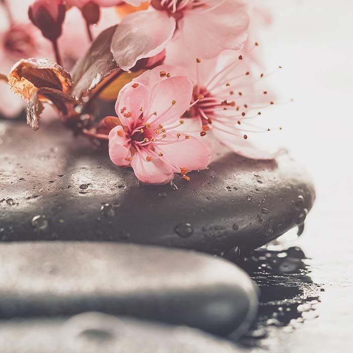 Hydro Massage für Ihr Wohlbefinden